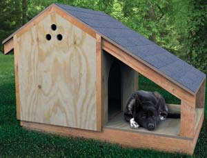 Build a Dog House