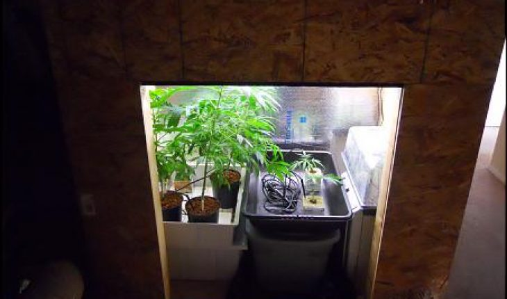 How To Build A Grow Box Diy And Repair Guides