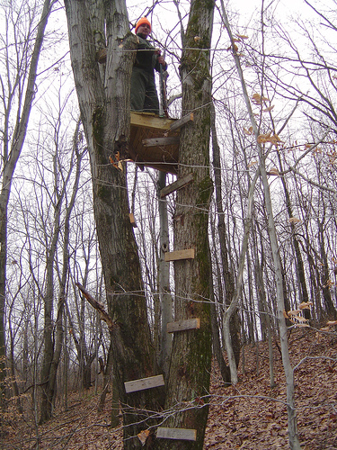 How To Build A Tree Stand Diy And Repair Guides